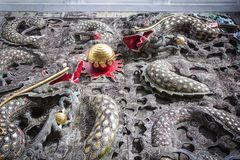 Härliga väggskulpturer av Wenwu på den Wenwu templet i Puli Coun arkivbilder