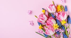 Härliga vårblommor på pastellfärgad rosa bästa sikt för tabell Hälsningkort eller baner för internationell kvinnadag Lekmanna- lä arkivfoton