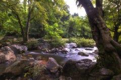 Härliga vattenfall i nationalpark i Thailand Khlong Lan Waterfall, Kamphaengphet landskap Arkivfoton