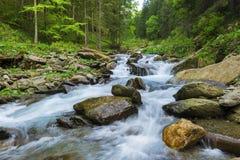 Härliga vattenfall i uppströms av den Sambata floden i Fagaras mo Arkivbild