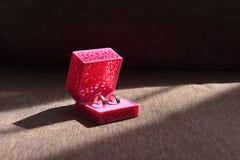 Härliga vigselringar i en ask för garneringar Arkivfoton