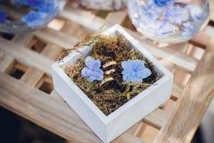 Härliga vigselringar i vita träaskar med blåa små blommor ro för pärla för inbjudan för garnering för dekor för bakgrundsboutonni Royaltyfri Bild