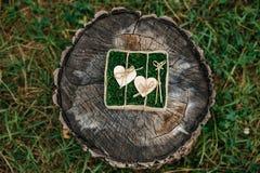 Härliga vigselringar på träbakgrund, en stubbe Royaltyfri Fotografi