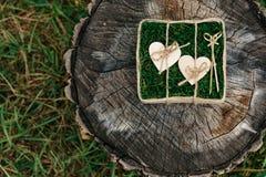 Härliga vigselringar på träbakgrund, en stubbe Arkivfoton