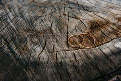 Härliga vigselringar på träbakgrund, en stubbe royaltyfri foto