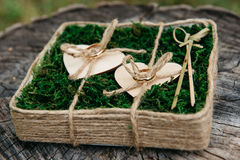 Härliga vigselringar på träbakgrund, en stubbe royaltyfri bild