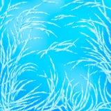 Härliga vintermodeller av rimfrosten på djupfryst exponeringsglas royaltyfri illustrationer
