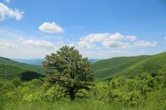 Härliga West Virginia Arkivbild