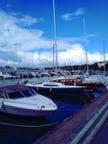 härliga yachter på marina royaltyfri fotografi