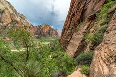 Härliga Zion Canyon View royaltyfria bilder