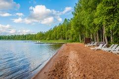 Härligt öde skogdamm för sandig strand med vita sunbeds på bakgrunden av träd och blå himmel Royaltyfria Bilder