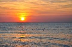 härligt över havssolnedgång Royaltyfri Foto