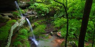 Härligt Alabama landskap arkivbilder