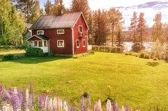 Härligt amerikanskt stilhus med grön gräsmatta royaltyfri bild