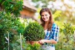 Härligt arbeta i trädgården för ung kvinna Arkivfoton