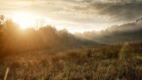 Härligt auroral höstlandskap fotografering för bildbyråer