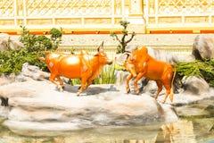 Härligt av djur två runt om den kungliga krematoriet på November 04, 2017 Arkivbilder