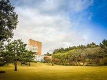 Härligt av temuseumträdgården i bakgrund för blå himmel, det berömda museet för grönt te i den Jeju ön, Sydkorea Arkivfoto