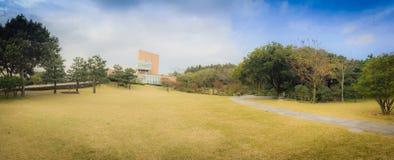 Härligt av temuseumträdgården i bakgrund för blå himmel, det berömda museet för grönt te i den Jeju ön, Sydkorea Royaltyfria Foton