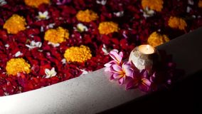 Härligt bad med blommor stock video