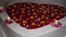 Härligt bad med blommor arkivfilmer