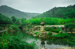 Härligt bambuhav royaltyfri fotografi