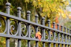 Härligt bearbetat staket Bild av ett dekorativt gjutjärnstaket MetallstaketClose upp Metall förfalskat staket Royaltyfria Foton