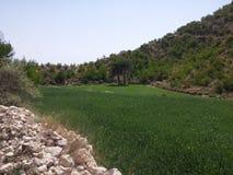 Härligt berg i Pakistan Royaltyfria Bilder