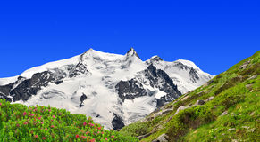 Monte Rosa - schweiziska Alps Royaltyfri Bild
