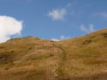 Härligt berghöstlandskap Bieszczady Royaltyfri Fotografi