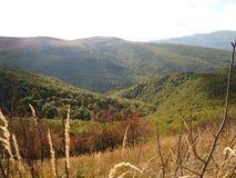 Härligt berghöstlandskap Bieszczady Arkivbilder