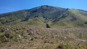 härligt berglandskap Arkivfoto