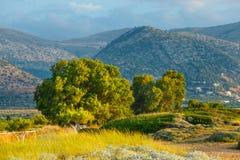 Härligt berglandskap av Kreta Arkivfoto