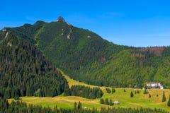 härligt berglandskap - bergssida Royaltyfri Foto