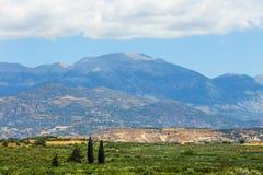 Härligt berglandskap med den olivgröna kolonin, Kreta Fotografering för Bildbyråer