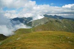 Härligt bergsommarlandskap fagarasberg romania Arkivbild