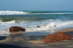 Härligt beskåda av en överraska tropisk strand i Indien Arkivbild