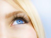 härligt blått öga Arkivfoton