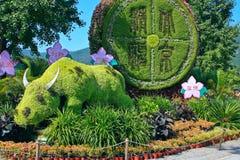 härligt blom- Royaltyfri Fotografi