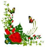 härligt blom- för bakgrund Royaltyfri Bild