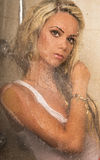 Härligt blont posera för kvinna. Arkivfoton