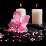 Härligt brunnsortbegrepp av den rosa hibiskusen, stearinljus, zenstenar Royaltyfria Bilder