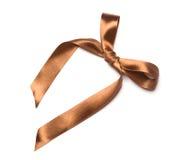 Härligt brunt band och pilbåge, goda för design. Isolerat på en vit bakgrund Royaltyfria Foton