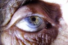 Härligt closeupskott av äldre en kvinnas öga med skrynklor omkring arkivfoto