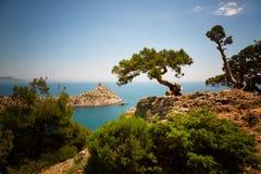 Härligt Crimean landskap royaltyfri foto