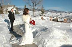 härligt dagbröllop Arkivfoto