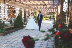 härligt dagbröllop Arkivbilder
