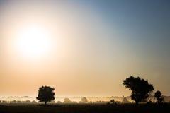 Härligt dimmigt landskap Royaltyfria Bilder