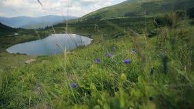 Härligt extremt sköt länge av bergsjön i de Carpathians bergen lager videofilmer