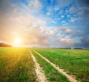Härligt fält och väg Fotografering för Bildbyråer